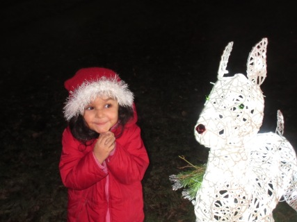 This look alone makes the light up deer worth it. She also insisted we put a red nose on him.